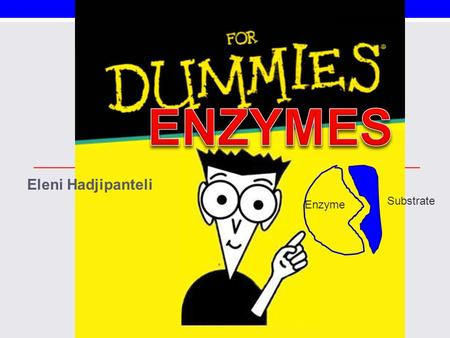 Eleni Hadjipanteli Substrate Enzyme. What are Enzymes? Organic molecules; Proteins *Globular *suffix –ase Catalysts that help speed up reactions Power.