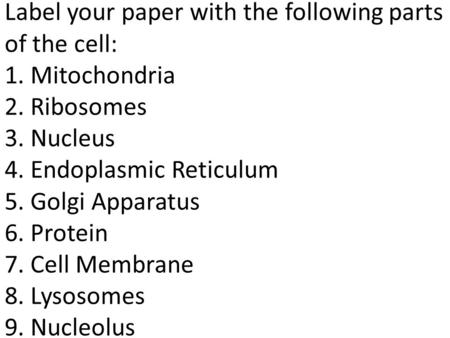 Label your paper with the following parts of the cell: 1. Mitochondria 2. Ribosomes 3. Nucleus 4. Endoplasmic Reticulum 5. Golgi Apparatus 6. Protein 7.