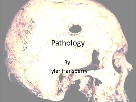 Pathology By: Tyler Hansberry. What is Pathology? Pathology is the study and diagnosis of disease through examination of organs, tissues, bodily fluids.