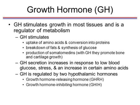Growth Hormone (GH) GH stimulates growth in most tissues and is a regulator of metabolism –GH stimulates uptake of amino acids & conversion into proteins.