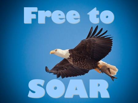 Free to SOAR. SOAR An obstacle we must overcome: Our Past.