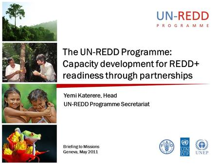 The UN-REDD Programme: Capacity development for REDD+ readiness through partnerships Yemi Katerere, Head UN-REDD Programme Secretariat Briefing to Missions.
