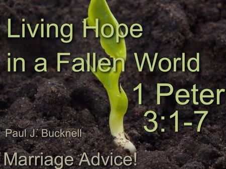 1 Peter Living Hope in a Fallen World 3:1-7 Paul J. Bucknell Marriage Advice!
