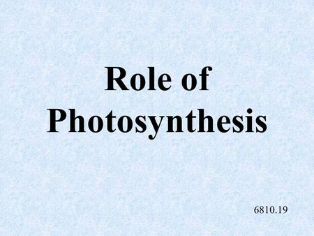 Role of Photosynthesis 6810.19 Root System Two types: Fibrous root system Tap root system.