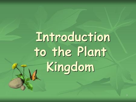 1 Introduction to the Plant Kingdom Introduction to the Plant Kingdom.