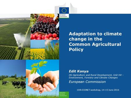 Adaptation to climate change in the Common Agricultural Policy