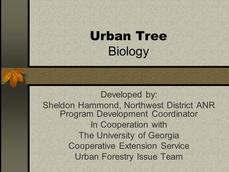 Urban Tree Biology Developed by: Sheldon Hammond, Northwest District ANR Program Development Coordinator In Cooperation with The University of Georgia.