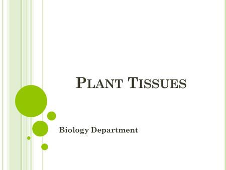 P LANT T ISSUES Biology Department. P LANT T ISSUES  Tissues can be classified into :  Meristematic tissues  Permanent tissues.
