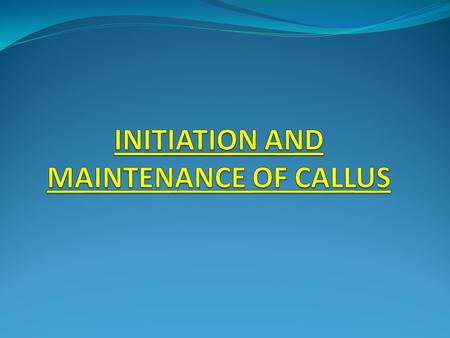 INITIATION AND MAINTENANCE OF CALLUS