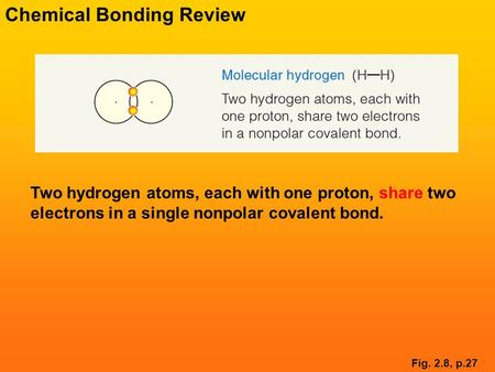 Two hydrogen atoms, each with one proton, share two electrons in a single nonpolar covalent bond. Fig. 2.8, p.27 Chemical Bonding Review.
