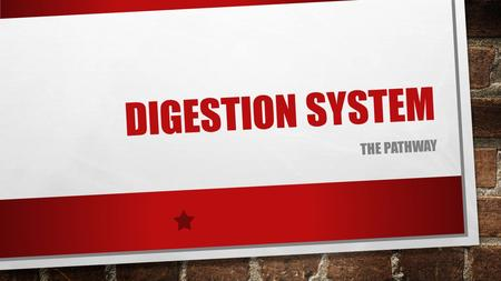 DIGESTION SYSTEM THE PATHWAY. WHAT IS DIGESTION? THE PROCESS IN WHICH FOOD IS BROKEN DOWN, NUTRIENTS ARE ABSORBED AND WASTES ARE ELIMINATED THE FOUR STAGES.