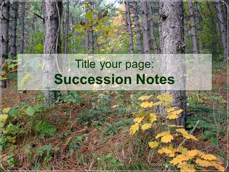 Title your page: Succession Notes. Succession: The growth of an area through the gradual replacement of one plant community by another eventually leading.