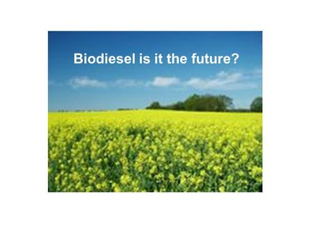 Biodiesel is it the future?. What is Biodiesel? Biodiesel is a sustainable, renewable fuel which is produced from vegetable oils to extrapolate the Fatty.