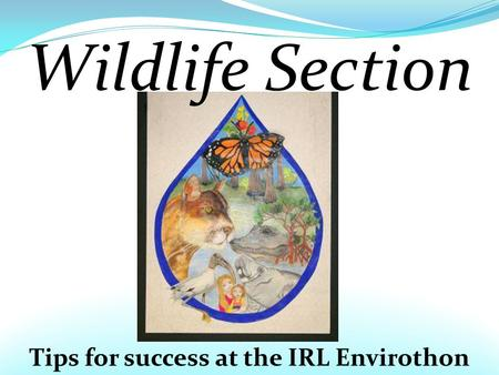 Tips for success at the IRL Envirothon Wildlife Section.