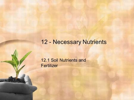 12 - Necessary Nutrients 12.1 Soil Nutrients and Fertilizer.