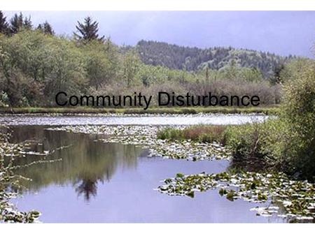 Community Disturbance. Nonequilibrium Model Early ecologists thought of nature as being in equilibrium. Actually, environments are constantly changing.