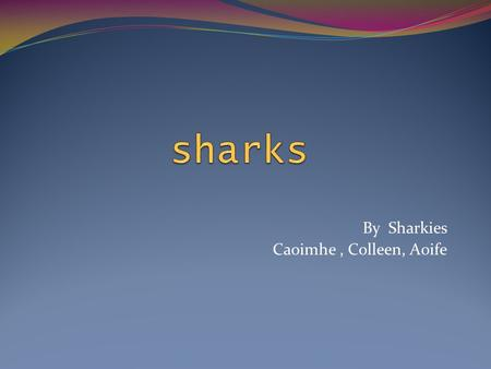 By Sharkies Caoimhe, Colleen, Aoife Introduction The body Swimming Hunting Types of Sharks Facts True Stories Quiz.
