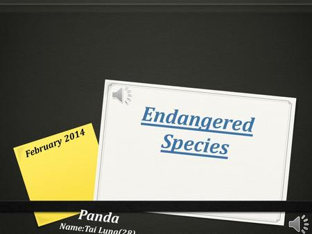Endangered Species Panda Name:Tai Lung(28) Class:1D February 2014.