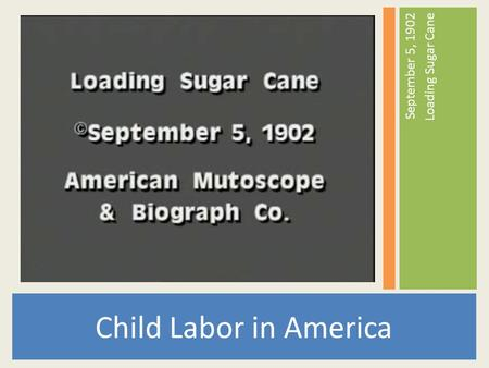 Child Labor in America September 5, 1902 Loading Sugar Cane.
