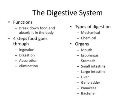 The Digestive System Functions – Break down food and absorb it in the body 4 steps food goes through – Ingestion – Digestion – Absorption – elimination.