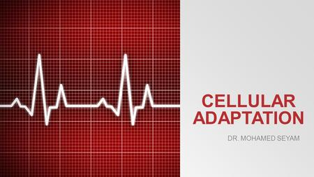CELLULAR ADAPTATION Dr. Mohamed seyam.
