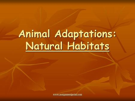 Animal Adaptations: Natural Habitats www.assignmentpoint.com.