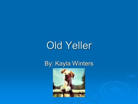 Old Yeller By: Kayla Winters Authors Biography  Fred Gipson was born February 7,1908.And he was an American author. He is best known for writing the.