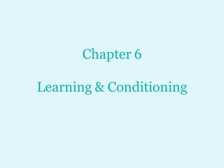 Chapter 6 Learning & Conditioning. Discussion Question: What is learning?