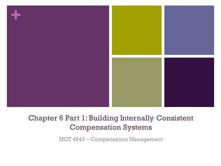 + Chapter 6 Part 1: Building Internally Consistent Compensation Systems MGT 4543 ~ Compensation Management.