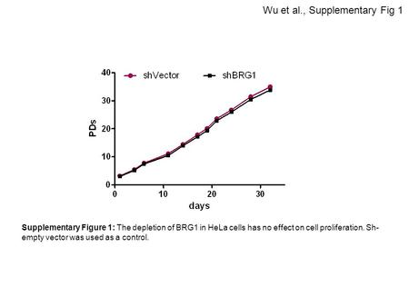 Wu et al., Supplementary Fig 1 Supplementary Figure 1: The depletion of BRG1 in HeLa cells has no effect on cell proliferation. Sh- empty vector was used.