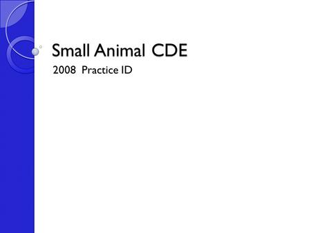 Small Animal CDE 2008 Practice ID. Dogs Chinese Shar-Pei.
