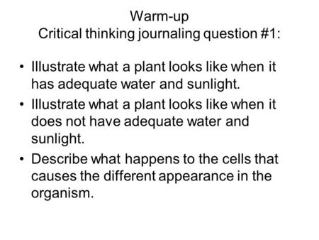 Warm-up Critical thinking journaling question #1: Illustrate what a plant looks like when it has adequate water and sunlight. Illustrate what a plant looks.