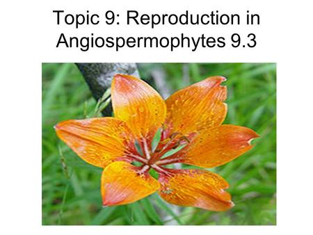 Topic 9: Reproduction in Angiospermophytes 9.3. Draw and label a diagram showing the structure of a dicotyledonous animal- pollinated flower Limit the.