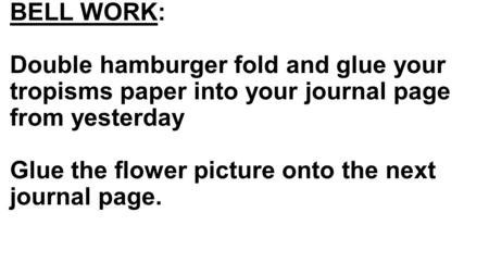 BELL WORK: Double hamburger fold and glue your tropisms paper into your journal page from yesterday Glue the flower picture onto the next journal page.