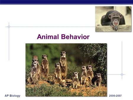 AP Biology 2006-2007 Animal Behavior AP Biology What is behavior & Why study it?  Behavior  everything an animal does & how it does it  response to.