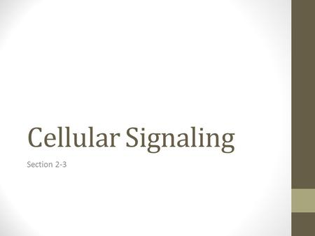Cellular Signaling Section 2-3. Discussion Points: What happened? How did you recognize where to go? How does this model cell communication? What effect.