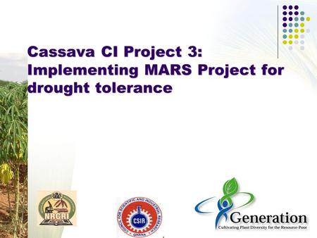 Cassava CI Project 3: Implementing MARS Project for drought tolerance.