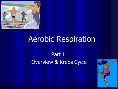 Aerobic Respiration Part 1: Overview & Krebs Cycle.