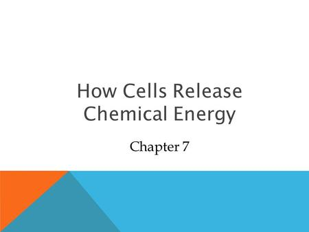 How Cells Release Chemical Energy Chapter 7. p.106a Overall Concept of Cellular Respiration.