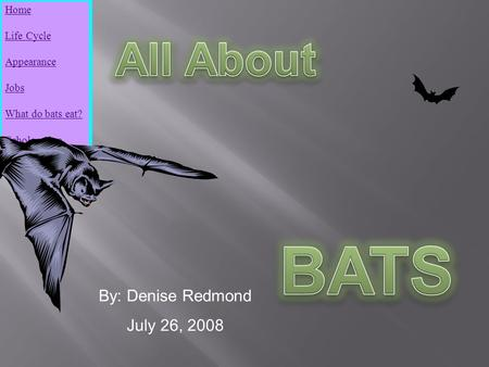 Home Life Cycle Appearance Jobs What do bats eat? Echolocation By: Denise Redmond July 26, 2008.