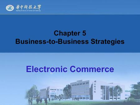Chapter 5 Business-to-Business Strategies Electronic Commerce.