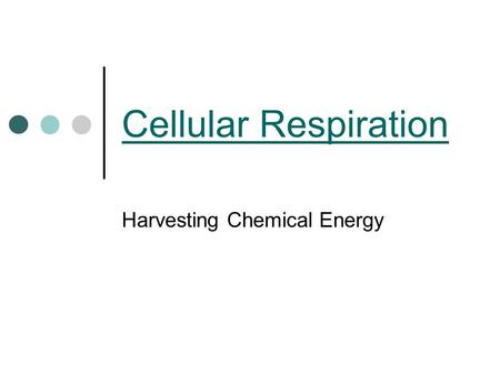 Cellular Respiration Harvesting Chemical Energy. Energy All living things need energy Energy comes from food when broken down Energy is stored in chemical.
