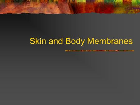 "Skin and Body Membranes. Epithelial Membranes Cutaneous Membrane Skin Dry Membrane Mucous Membrane Line cavities that open to exterior ""wet"" membranes."