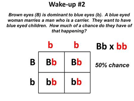 Wake-up #2 Brown eyes (B) is dominant to blue eyes (b). A blue eyed woman marries a man who is a carrier. They want to have blue eyed children. How much.