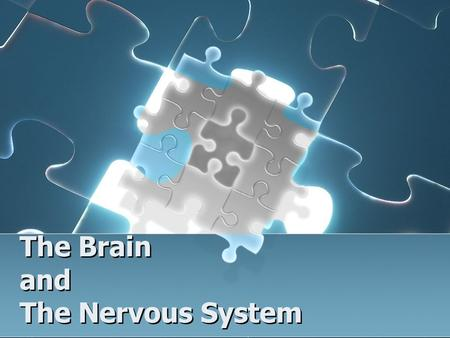 The Brain and The Nervous System. Brain Facts The brain weighs 3 pounds. The brain consumes 20-30% of the body's energy. There are about 100 billion neurons.