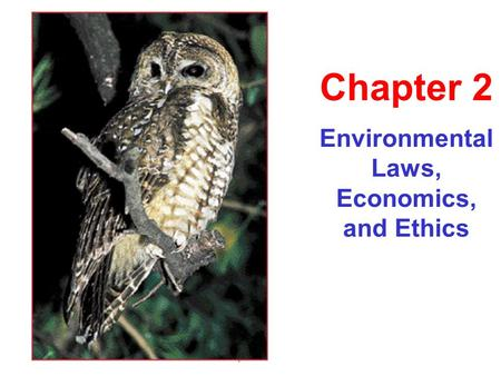 Environmental Laws, Economics, and Ethics Chapter 2.