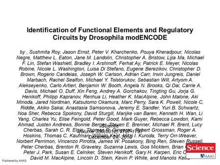 Identification of Functional Elements and Regulatory Circuits by Drosophila modENCODE by, Sushmita Roy, Jason Ernst, Peter V. Kharchenko, Pouya Kheradpour,