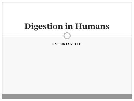 BY: BRIAN LIU Digestion in Humans. Human Digestive System The human digestive system does activities such as: ingestion, digestion, absorption, respiration,