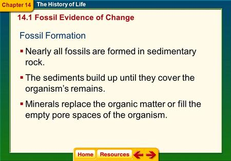 Fossil Formation The History of Life  Nearly all fossils are formed in sedimentary rock.  The sediments build up until they cover the organism's remains.