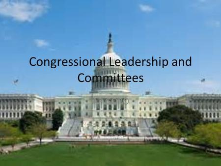 Congressional Leadership and Committees AP GOPO. Role of Congress Member Examples Lawmaking  Initiating Bills  Serving on Committees  Participating.